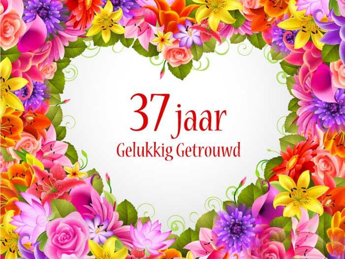 37 jaar getrouwd jimjimiz..com: 37 jaar geleden. 37 jaar getrouwd